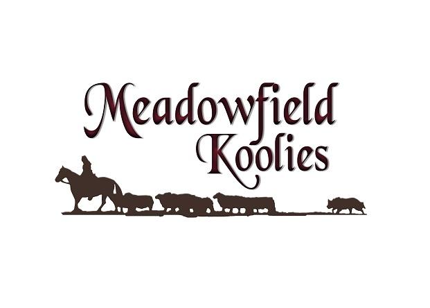 Meadowfield