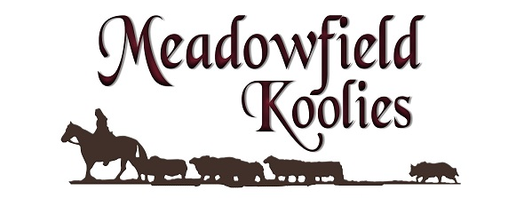 Meadowfield Koolies Logo